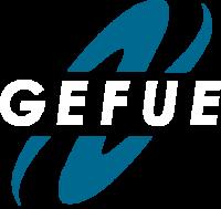 GefuE Vewaltungs- und Betriebsführung GmbH